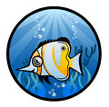 Tropical fish cartoon illustration eps Royalty Free Stock Images