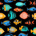 Tropical Fish Seamless Pattern Royalty Free Stock Photo