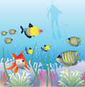 Tropical fishes and scuba diver Stock Photography