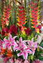 Tropical flower arrangement Royalty Free Stock Photo