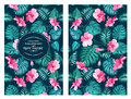 Tropical flower pattern Royalty Free Stock Photo