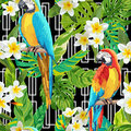 Tropical Flowers and Birds Geometric Background - Vintage Seamless Pattern Royalty Free Stock Photo