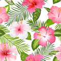 Tropical Flowers and Leaves Background Royalty Free Stock Photo