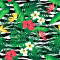 Tropical flowers and leaves on zebra striped background. Seamless. Royalty Free Stock Photo