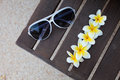 Tropical flowers and sunglasses on the bench Royalty Free Stock Photo