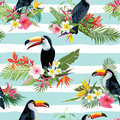 Tropical Flowers and Toucan Birds Seamless Background Royalty Free Stock Photo