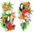 Tropical flowers and toucan