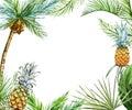 Tropical frame raster Royalty Free Stock Photo