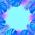 Tropical frame vector illustration. with exotic jungle plants, palm leaves, monstera. Folliage background. Exotic tropic