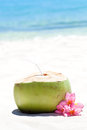 Tropical fresh cocktail on white beach coconut decorated plumeria Stock Image