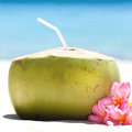 Tropical fresh cocktail on white beach coconut decorated plumeria Stock Photography
