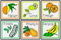 Tropical fruit descriptive set vector illustration of Stock Image