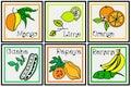 Tropical Fruit Descriptive Set Royalty Free Stock Photo