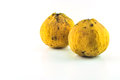 Tropical fruit kra thon a kind of exotic thai fruit Royalty Free Stock Images