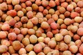Tropical fruit lychee. Fresh raw organic lychee fruit for sale at farmers market or shop. Vegan food, healthy nutrition, fruit Royalty Free Stock Photo