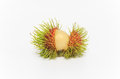 Tropical fruit rambutan on white background Stock Photography