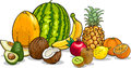 Tropical fruits cartoon illustration of food design Stock Image
