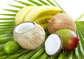 Tropical fruits coconut bananas and mango on palm leaf Royalty Free Stock Photo