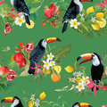 Tropical Fruits, Flowers and Toucan Birds Seamless Background. Retro Summer Pattern Royalty Free Stock Photo