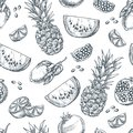Tropical fruits seamless vector pattern. Sketch hand drawn illustration of pineapple, lemon, watermelon, pomegranate. Royalty Free Stock Photo