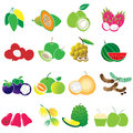 Tropical fruits vector set Stock Image