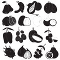 Tropical Fruits Vector Set Royalty Free Stock Images