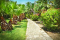 Tropical garden Royalty Free Stock Photography
