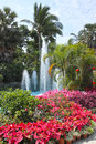 Tropical garden the landscape of with flowers fountain and coconut trees Stock Photo