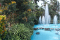 Tropical garden the landscape of with fountain and coconut trees Stock Photography