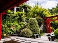 Tropical Garden at Monte above Funchal Madeira