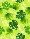 Tropical green leaves seamless pattern on light green background. Vector illustration.