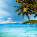 Tropical heaven exotic beach in the morning Royalty Free Stock Images