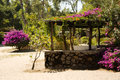 Tropical hideaway malawi on the beach between bougainvilleas africa Stock Photography