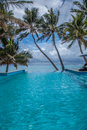 Tropical infinity oceanside pool with palm trees in rarotonga cook islands Royalty Free Stock Images