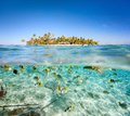 Tropical island above and underwater Royalty Free Stock Images