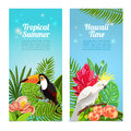 Tropical island birds vertical banners set