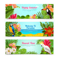 Tropical island flowers horizontal banners set happy time hawaii islands summer vacation posters with plants abstract isolated Stock Photos