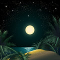The tropical island illustration of sandy coast and palm trees against quiet sea and clear star sky Royalty Free Stock Photo