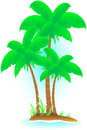 tropical island with palm Royalty Free Stock Images