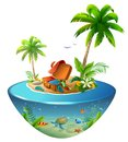 Tropical island with palm trees in sea. Outdoor suitcase and clothes for beach holiday