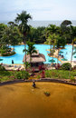 Tropical island resort hotel pool & landscaping Royalty Free Stock Photo