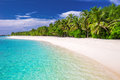 Tropical island with sandy beach and palm trees Royalty Free Stock Photo