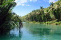 Tropical Jungle River Royalty Free Stock Photography