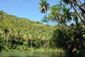 Tropical jungle river Stock Image