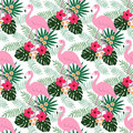 Tropical jungle seamless pattern with flamingo bird, hibiscus and plumeria flowers and palm leaves, flat design, Royalty Free Stock Photo