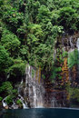 Tropical jungle and waterfall. Stock Images