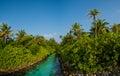 Tropical jungles panorama view at Maldives Royalty Free Stock Photo