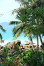 Tropical landscape a at the edge of indian ocean with granite rocks coconut trees and turquoise sea Royalty Free Stock Photo