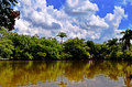 Tropical landscape with trees, lake, blue sky with white clouds and reflection in water Royalty Free Stock Photo
