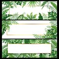 Tropical leaves banners. Exotic palm leaf banner, natural coconut palms branch frames and jungle plants vector